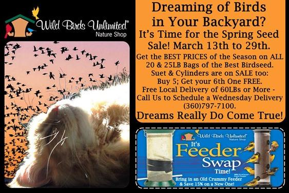 Spring Seed Sale - Dreaming of Birds