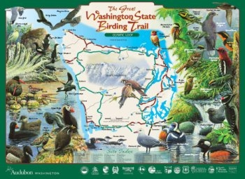 The Great Washington State Birding Trail - Olympic Loop