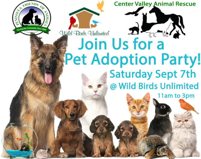 Pet Adoption Day Party